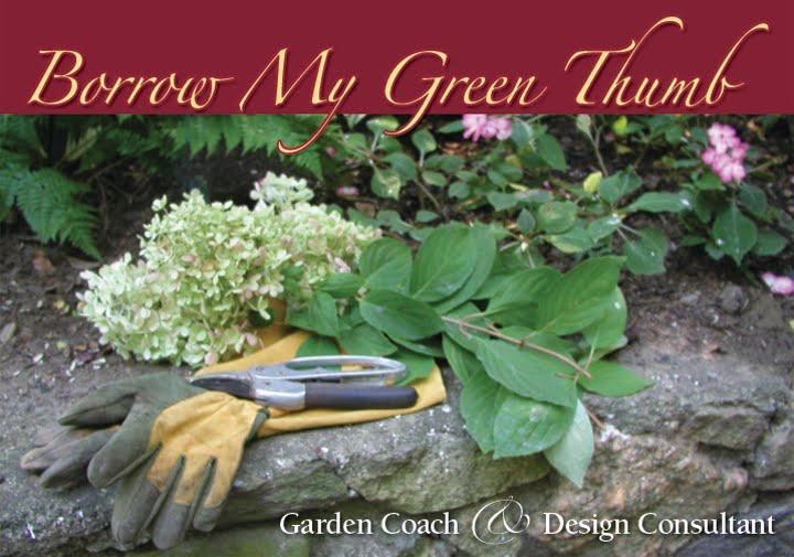 Cathy's Green Thumb