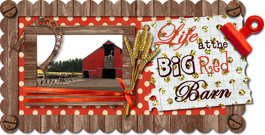 Life at the Big Red Barn