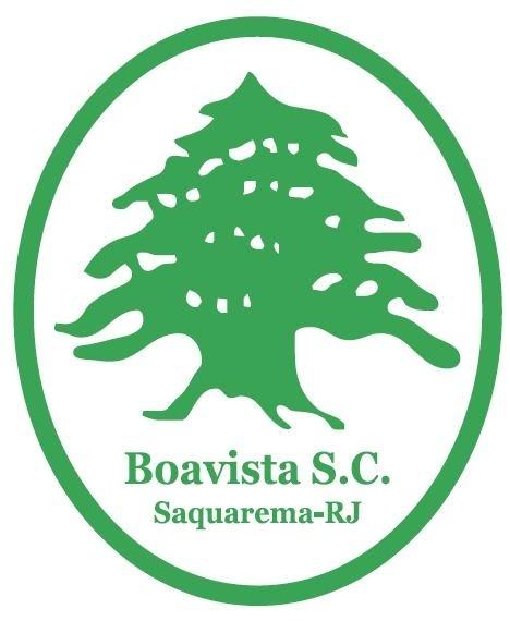 Resultado de imagem para escudo do boavista