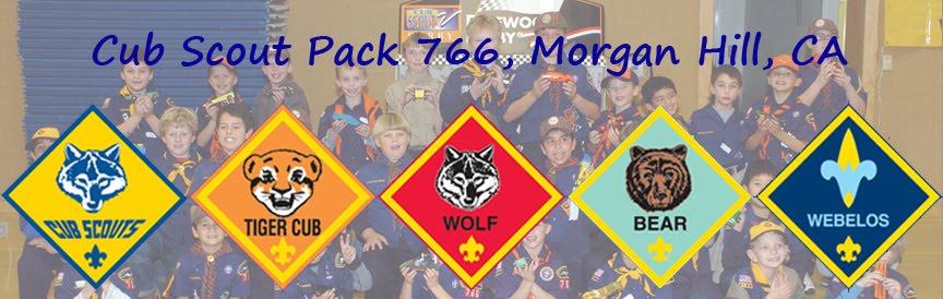 Cub Scout Banner