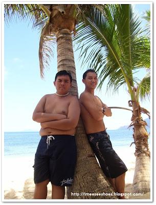 nephew, beach, tree