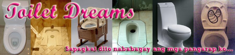 Toilet Dreams