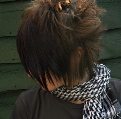 emo hair for guys. Members of the Emo group often
