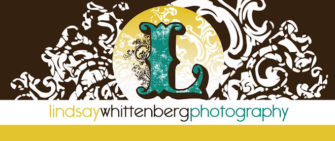 Lindsay Whittenberg Photography