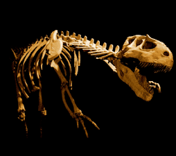 Dinossauros fóssies