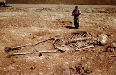 ~~Giant Human Skeleton Ever Seen~~ Giant-skeleton015