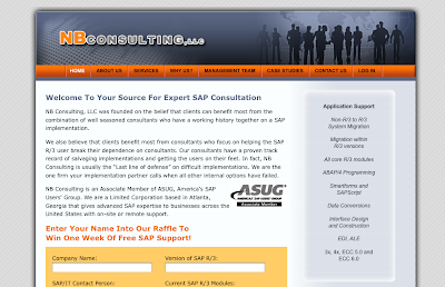 NB Consulting - the SAP Experts