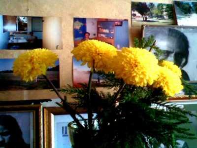 Flowers for my dearest ones !