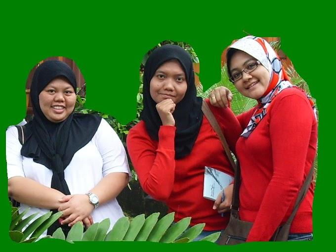 Gambar Langkawi, Coklat