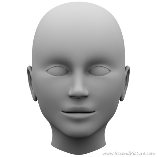 3ds Max Animation 2010: Modelling a Human Head