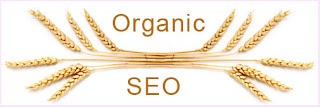 Organic SEO - A Blanket Term