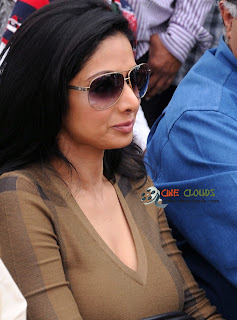 Old actress Sri Devi latest Photos34