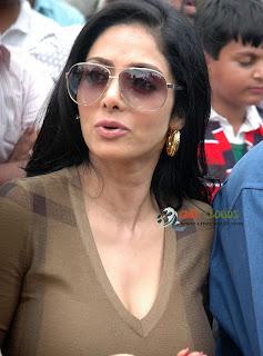 Old actress Sri Devi latest Photos46