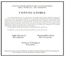 CONVOCATORIA A ELECCIONES JUNTA DIRECTIVA 2009-2013