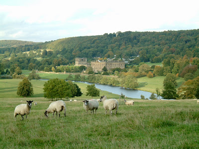 The Duchess of Devonshire once estimated that Chatsworth's 175 rooms occupy more space than 365 average-sized three-bedroom houses, observing in consequence that it was a bad place to housetrain a puppy. Her husband liked to list its 1.3 acres of roof, 3,426 feet of passages, 17 staircases, 56 lavatories and 359 doors, all lit by 2,084 light bulbs.