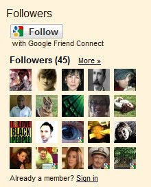 Google Followers