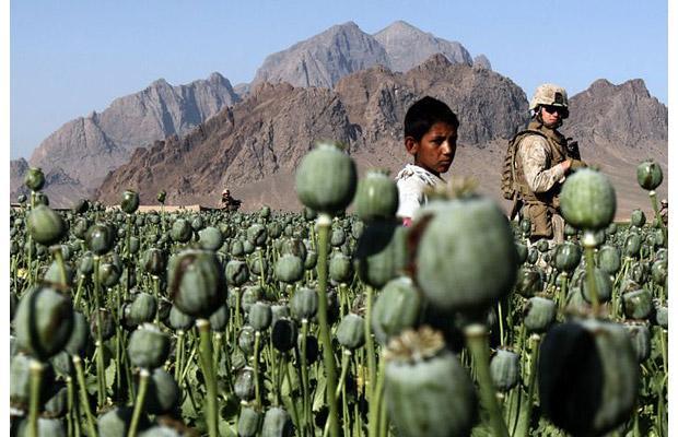 http://3.bp.blogspot.com/_xKlnynoHmV4/TGgZTzCdyWI/AAAAAAAAMZ0/bZgrw31rGkY/s1600/Afgan-boy-Opium-ha_1396923i.jpg