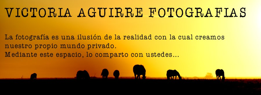 Victoria Aguirre Fotografias