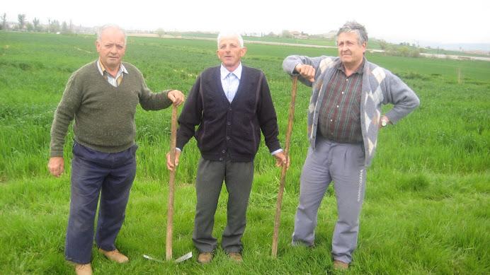 Els pagessos que herbejaren el camp