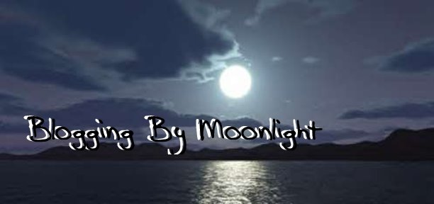 Blogging by Moonlight