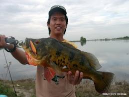 Myfishing 的朋友。。  nighthawk