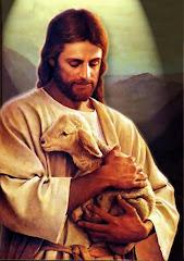 """""""Så är det också er himmelske faders vilja att ingen av dessa små skall gå förlorad"""" Matteus 18:14"""