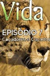 BBC – Vida: 7 – Caçadores e Caçados