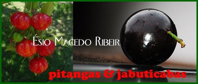 PITANGAS & JABUTICABAS - ÉSIO MACEDO RIBEIRO
