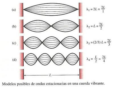 Frecuencia frecuencias caracter sticas sobretono y arm nica for Caracteristicas de una habitacion