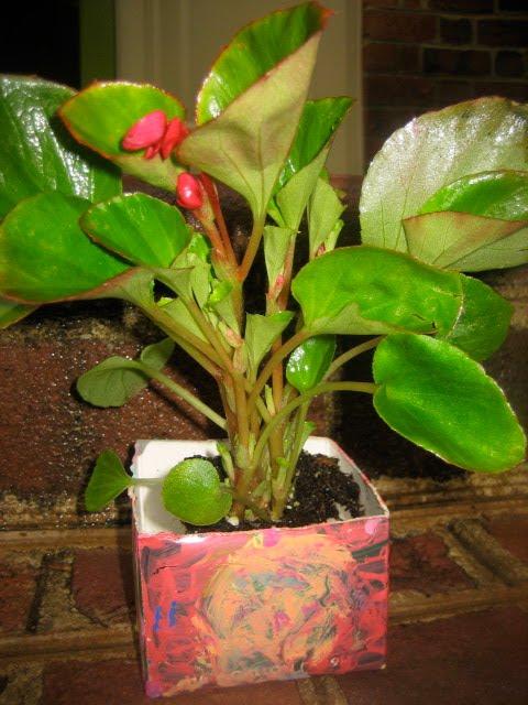 Repurpose a Milk or OJ carton into a planter--Earth Day Idea