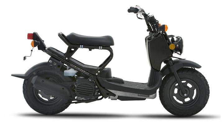 2010 Honda Ruckus 50 Scooter