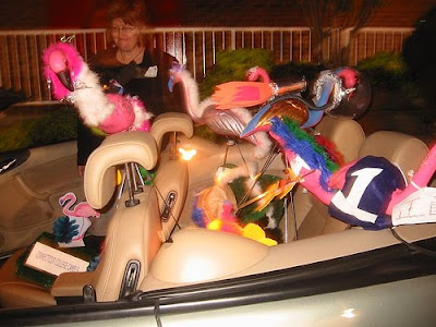 Flamingos in the back seat
