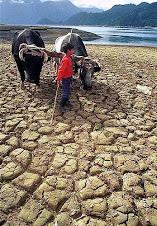 Problema del agua