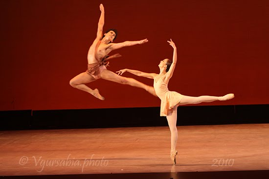Dancescape usa international ballet competition 2010 for Ballerine disegnate