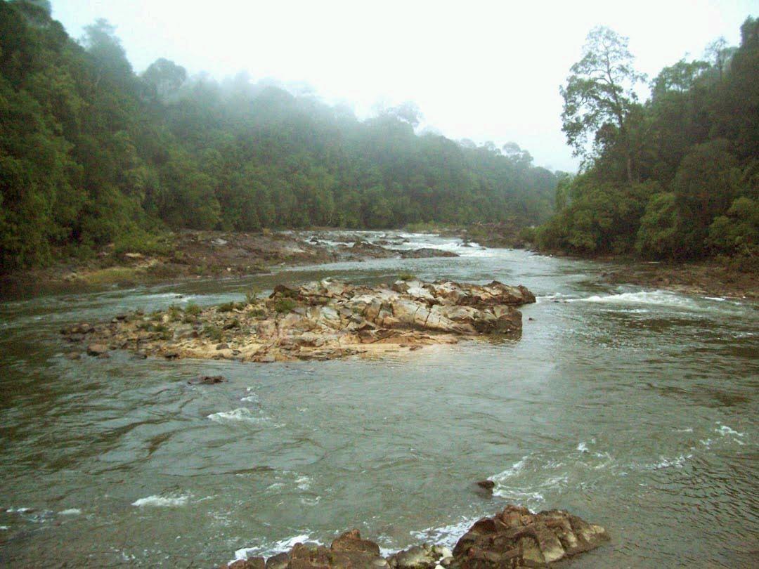 Sungai edau