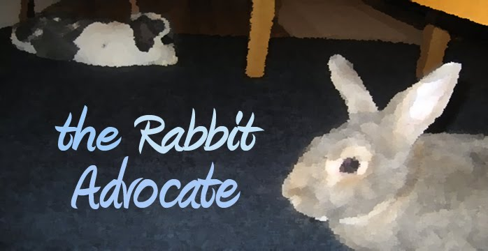 The Rabbit Advocate