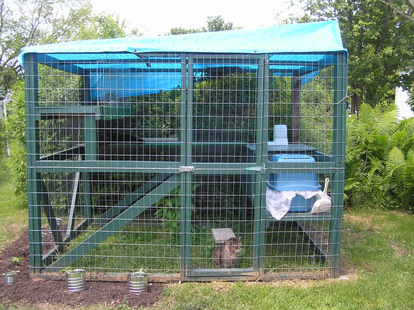 Backyard Enclosures For Cats :  Rescue, Inc  An Alliance for Cat Protection Outdoor Cat Enclosure
