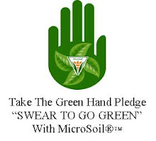 Take The Green Hand Pledge