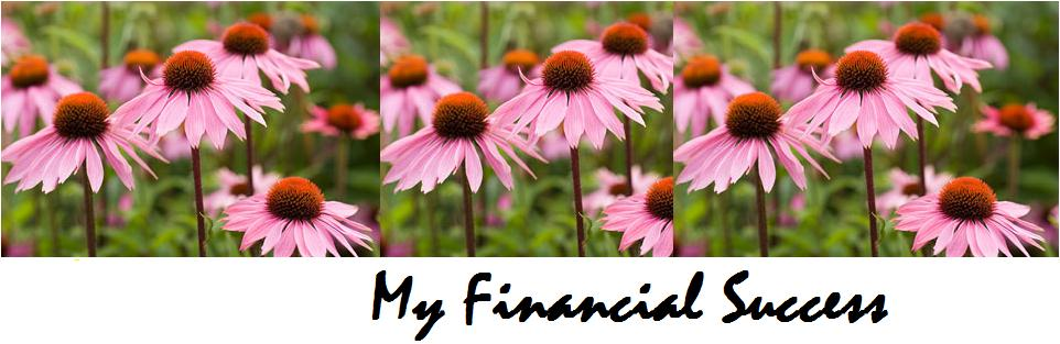 My Financial Success