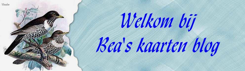 Welkom bij Bea's kaartenblog