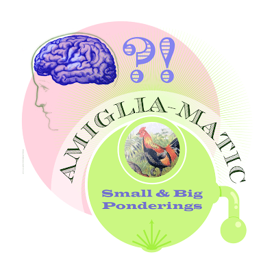 The Small and Big Amiglia-matic