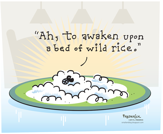 Fly: Ah, to awaken upon a bed of wild rice.