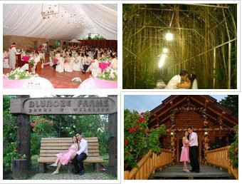 Weddings at Blueroze Farms - Lipa City