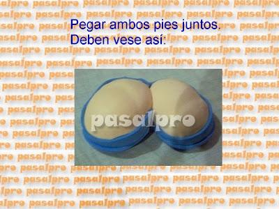 FOFULAPICERO CON PIES DE LA WEB (PASALPRO) CON PAP 037