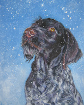 German Wirehaired Pointer Art