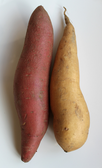 What's the difference between a yam and a sweet porato? A yam is a yam.