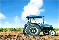 domates, toprağın işlenmesi, domates yetiştiriciliği