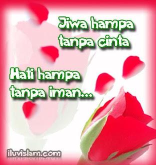 jiWa+haTi