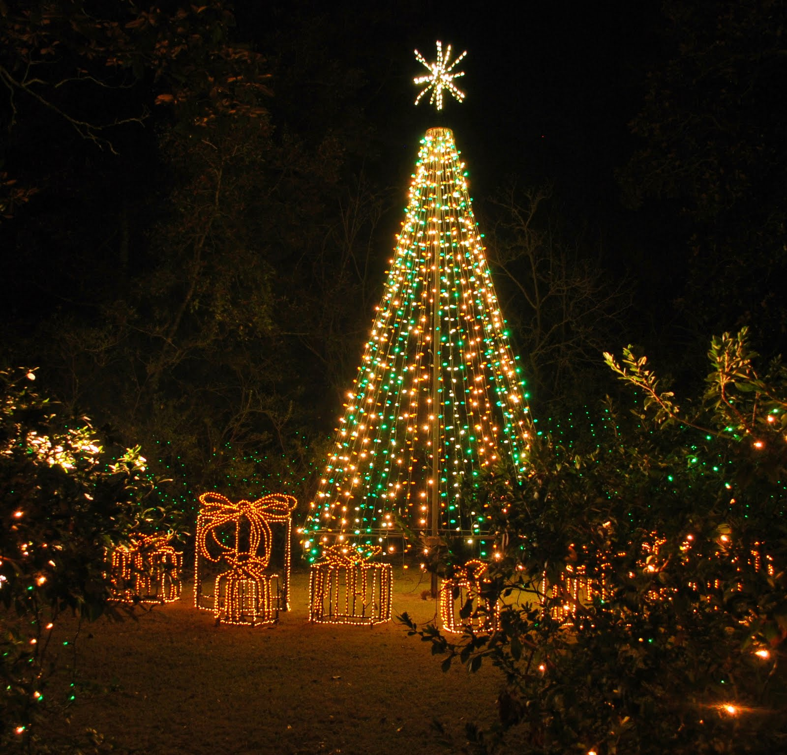 Ct On The Bay Christmas Lights At Bellingrath