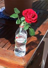 Agua de flores
